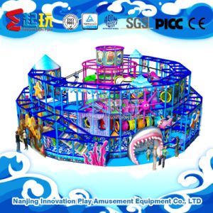 Undersea Themed Indoor Playground Equipment with TUV Certificate