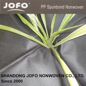 50GSM Black PP Spunbond Nonwoven Fabric for Horticulture