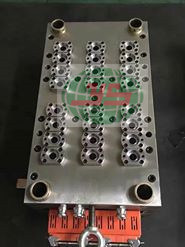 24 Cavity Plastic Injection Pet Preform Mould (YS1204) pictures & photos