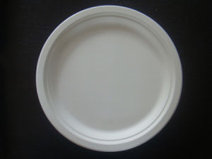 100% Biodegradable Cake Plate (YP-07) & China 100% Biodegradable Cake Plate (YP-07) - China 100 ...