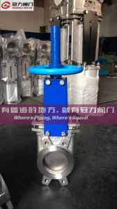 As2129 Table E Wafer Type Knife Gate Valve pictures & photos