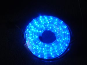 LED Rope Light (2 Wire Blue) pictures & photos