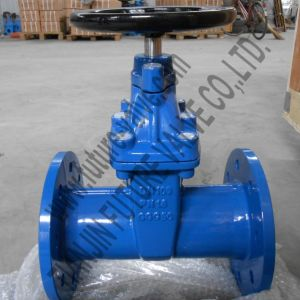 DIN3352 F5 Pn16 Dn100 Non-Rising Stem Resilient Seated Gate Valve