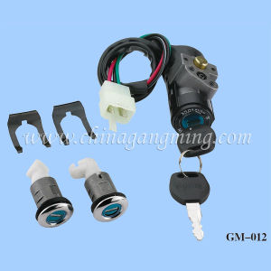 Motorcycle Locks (WH-100)
