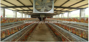 Drop Hammer Ventilation Exhaust Fan Application in Poultry House, Greenhouse, Workshop, Kitchen. pictures & photos