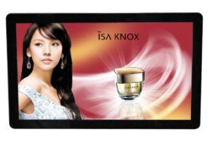 18.5 Inch LCD Video Player, Digital Signage, Advertising Display