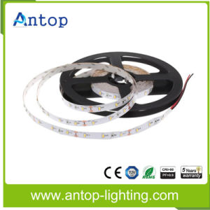 3014 S Shape LED Strip with 60 LED/Meter