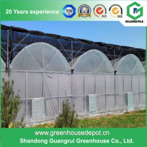 Plastic Film Greenhouse with High Quality and Low Price pictures & photos