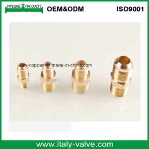 ODM Forged Brass Flare Nipple Fitting (AV90082) pictures & photos