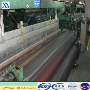 Manufacture of Plastic Window Screening (XA-SM21) pictures & photos