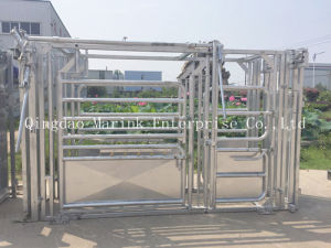 Galvanized Heavy Duty Cattle Squeeze Crush pictures & photos