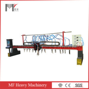 Strip Type CNC Cutting Machine (MF40/120)