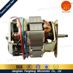 Home Appliance Motors for Small Plastic Grinder pictures & photos