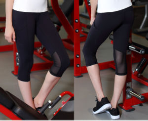 Elastic Skinny Custom Mesh Yoga Pants for Running with 88%Nylon 12%Elastic pictures & photos
