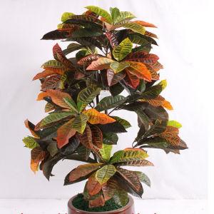 China 150cm Artificial Sa Jin Rong Bonsai Tree Fake Ficus Bonsai China Ficus Bonsai And Artificial Tree Price