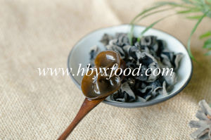 Chinese Vegetable Natural Black Wood Ear Agaric Ear pictures & photos