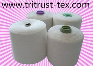 (3/38s) Polyester Yarn for Sewing pictures & photos