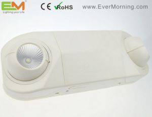 Professional Non Maintained Rechargeable LED Emergency Lamp