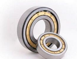 Nm35-6 Cylindrical Roller Bearing Auto Bearings pictures & photos