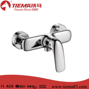 Single Lever Ceramic Cartridge Brass Bathroom Shower Faucet (ZS41502)