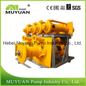 Coal Mine Sump Vertical Slurry Pump pictures & photos