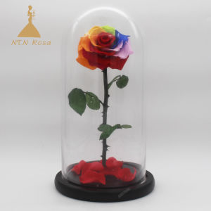 China Preserved Real Forever Rainbow Rose With Stem In Glass Dome For Wedding Centerpieces China Wedding Decor And Forever Rose In Glass Price,Joanna Gaines Shiplap Bedroom
