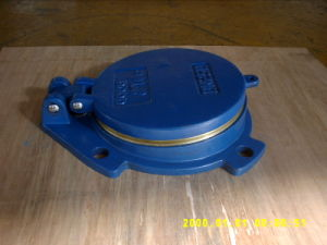 Ductile Iron Flap Valve with Metal Seal pictures & photos