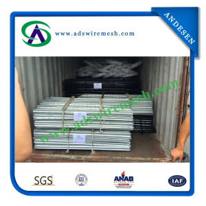 Q235 Australian & Newzealand Steel Y Post / Star Picket pictures & photos