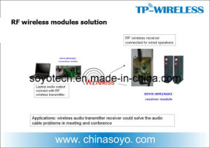 Soyo 2.4G Hi-Fi Digital Wireless Speaker Modules Solution pictures & photos
