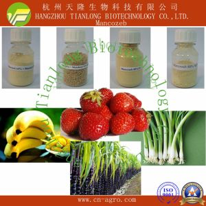 Price Preferential Fungicide Mancozeb (90%TC, 50%WP, 70%WP, 80%WP, 75%WDG, 43%SC, 600OF, etc) pictures & photos