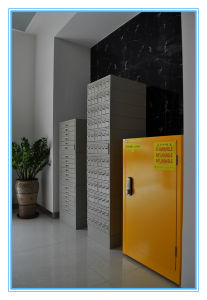 China Durable Safety Storage Lab Steel Fire Proof Cabinet pictures & photos