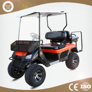 China 4 Wheel Drive Electric Car Golf Cart Sightseeing Car China