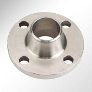 ANSI Standard Welding Neck Flange pictures & photos