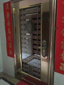 Color Stainless Steel Door (S-3017) pictures & photos