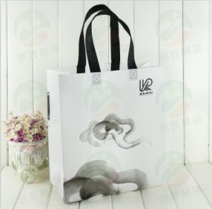 3D Non-Woven Promotional Bag with Customised Design (MYC-My-057)