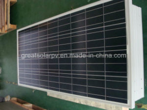 80W Poly Solar Panel with Low Price and High Quality pictures & photos