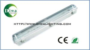 T8 Waater Proof Fluorescent Lighting Fixture, CE, RoHS, IEC Approval (DW-T8NSF) pictures & photos