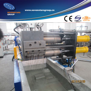 Pet Bottles Recycling Machine / Pet Granules Making Machine pictures & photos