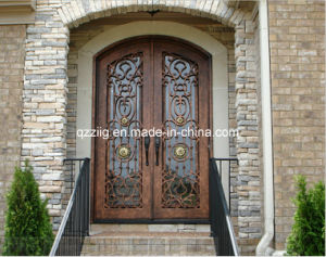 Luxury Iron Entry Door (ZY-IR090)
