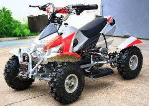 Big Discount 800W Electric ATV pictures & photos