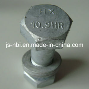 Customized High Quality Screw pictures & photos