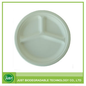 china disposable compostable food packaging 3 compartment plate10