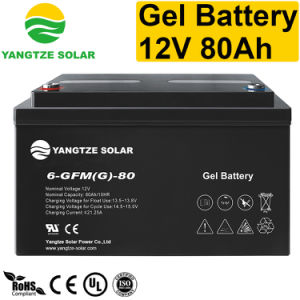 Wholesale Battery Distributor