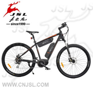 "Two Batteries Spoke Wheel Central Brushless Motor 29"" 350W E-Bike pictures & photos"