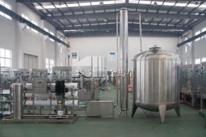 Industrial Water Treatment Reverse Osmosis Filter System pictures & photos