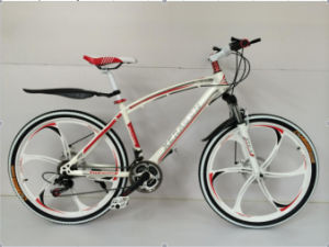 21 Speed Suspension Foldable MTB Bicycle/ MTB Bike/ MTB Bicycle Bike pictures & photos