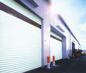 Specialized Manufacturer for Industrial Large Door pictures & photos