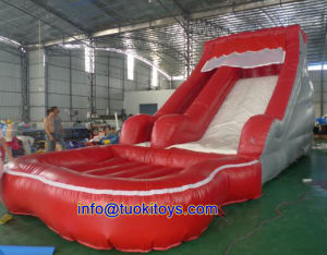 Durable and Reliable Inflatable Water Slide for Kids Toy (A025)
