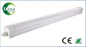 LED Batten Lamp with CE SAA Approved, IP65, Dw--LED-Zj-05 pictures & photos