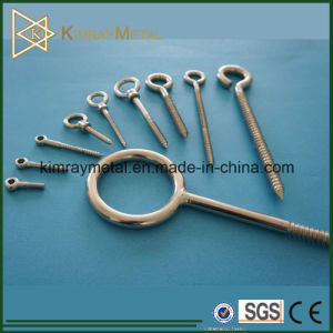 Stainless Steel Welded Eye Screw with Nut and Washer